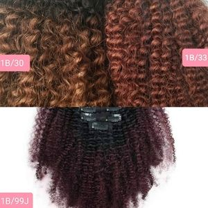 Afro Kinky Curly Coily 4C 4B Clip In Human Hair